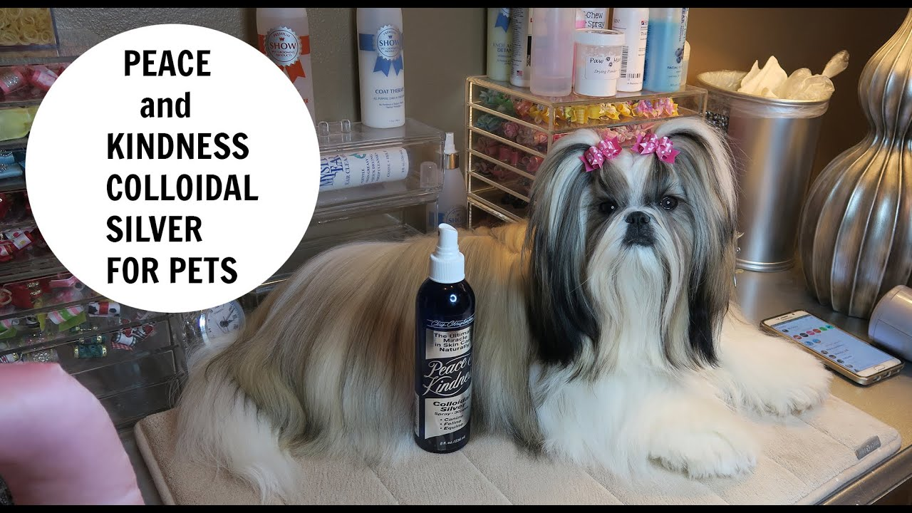 PEACE AND KINDNESS COLLOIDAL SILVER FOR PETS