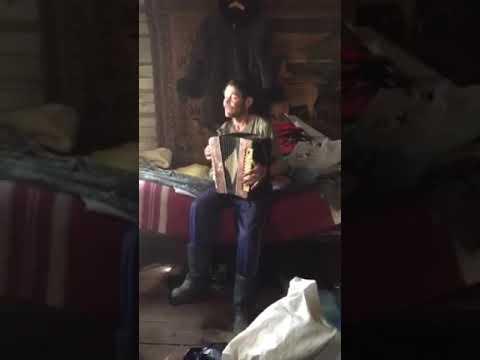 Мужик на гармошке поет белые розы Юрия Шатунова