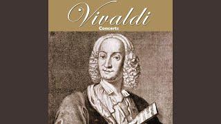 Strings Concerto in G Minor, RV 152: III. Allegro molto