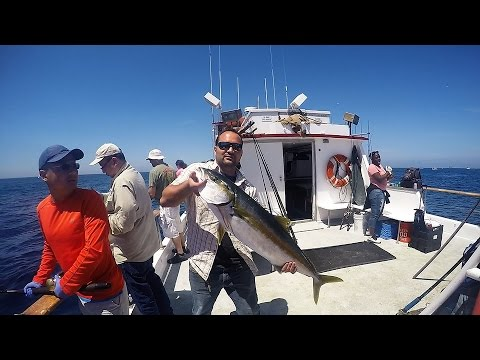 28 LbYellowtail Fishing-1/2 Day Southern Cal- Long Beach Ca.
