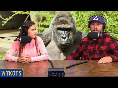 Cincinnati Zoo Gorilla Tragedy (WTKGTS #161)