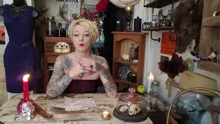 Black in color magic and witchcraft THE TAXIDERMY WITCH