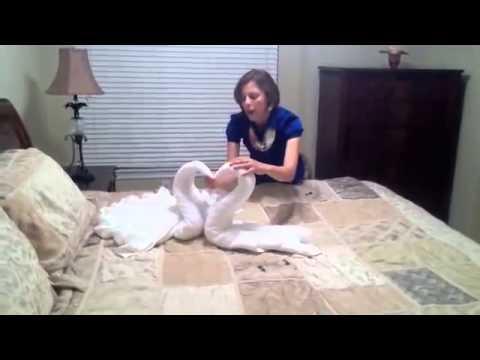 Cách làm thiên nga bằng khăn tắm