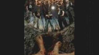 My favorite slam death metal breakdowns/grooves and Slam riffs PART 4