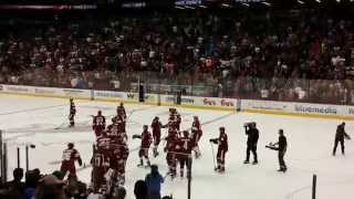 Arizona Coyotes game winning GOAL in overtime