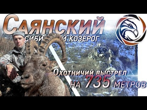 ТРОФЕЙНАЯ ОХОТА НА САЯНСКОГО КОЗЕРОГА (2019)