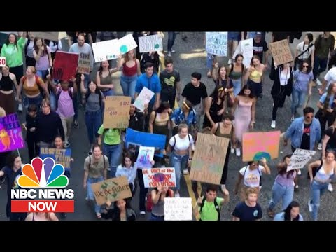 Major Climate Stories Of 2019: From Record-Breaking Temperatures To Mass Protests | NBC News NOW