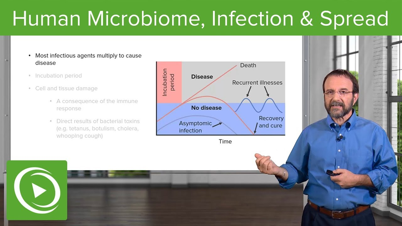 Bacteria: Human Microbiome, Infection & Spread – Microbiology | Lecturio