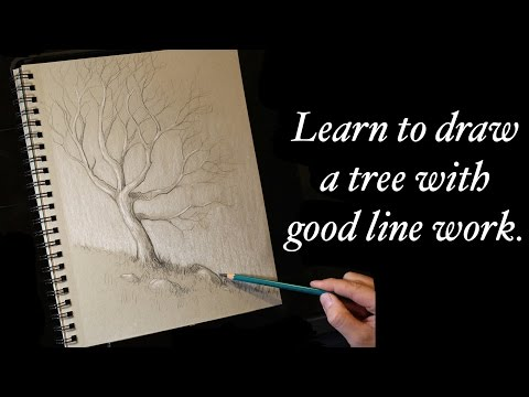How to draw a tree using strong line work - Tim Gagnon Sketchbook Challenge