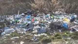 Горы мусора на Торбеевском озере
