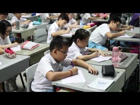 Literacy Programmes in Schools