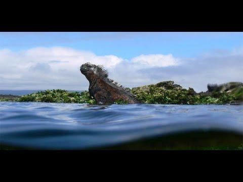Galapagos Islands HD