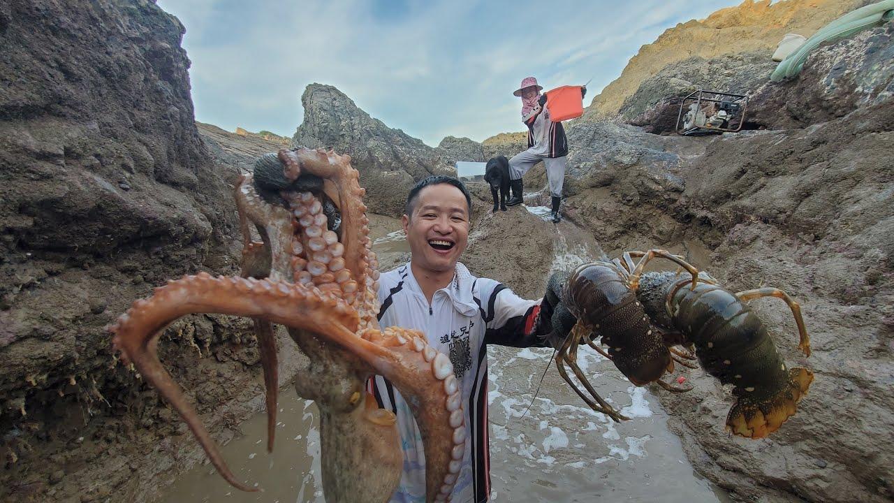 小明再次挑战一年前失败的水坑,及时抢救正被八爪鱼分食的龙虾