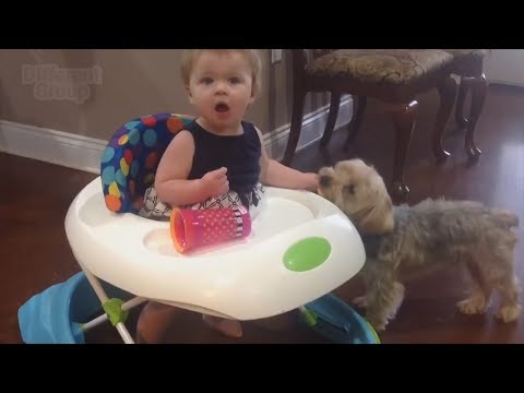 Funny Surprised Baby Reactions 2019 |Try Not to Laugh Challenge