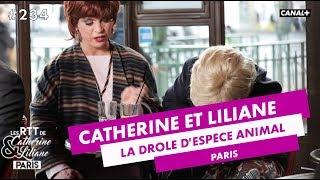 La drôle d'espèce animale - Catherine et Liliane - Canal +