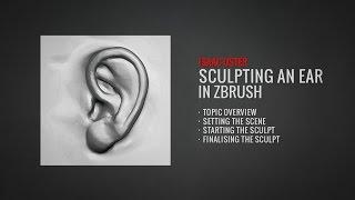 النحت الأذن في برنامج ZBrush (البرنامج التعليمي الكامل في BadKing.com.الاتحاد الافريقي)