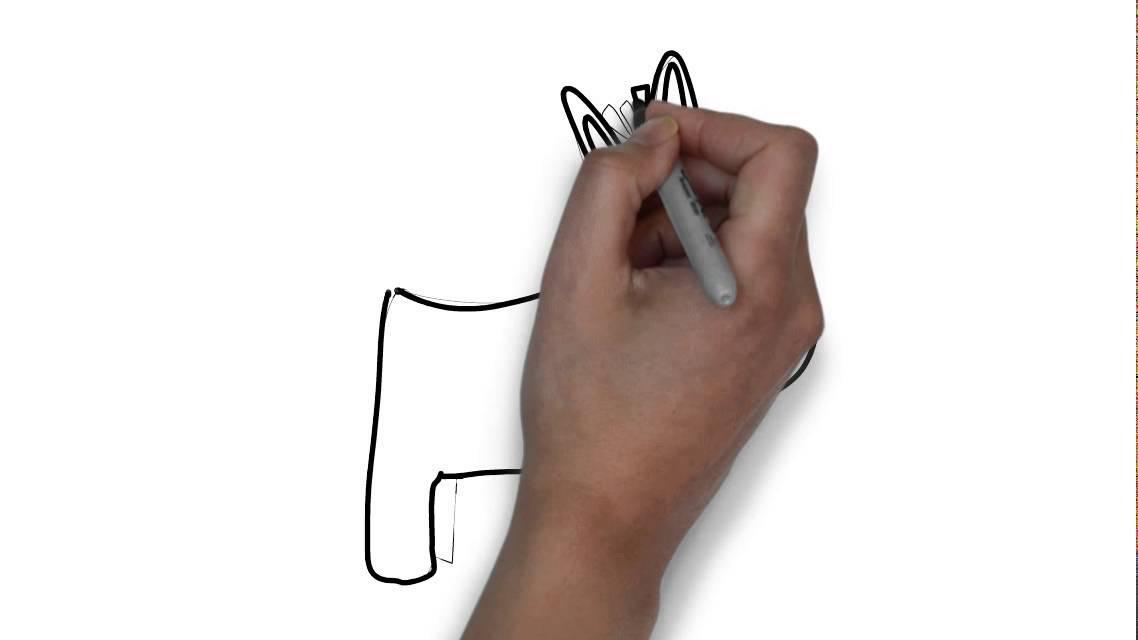 Cmo dibujar un burro  YouTube