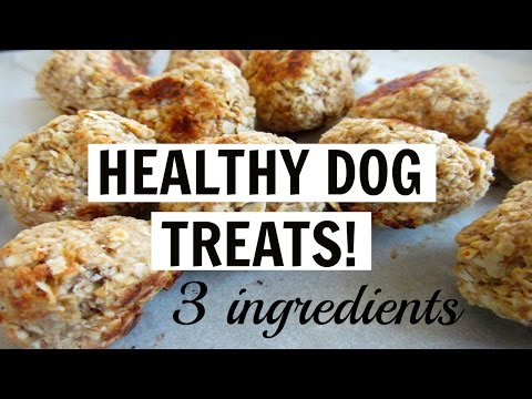 3 INGREDIENT HEALTHY DELICIOUS DOG TREATS! (vegan)