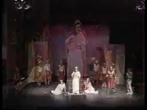 LE CONVENIENZE ED INCONVENIENZE TEATRALI ( VIVA LA MAMMA ) - GAETANO DONIZETTI - 2002