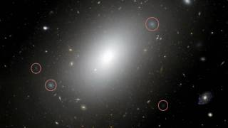 Hubblecast 13: Gargantuan galaxy NGC 1132 - A cosmic fossil