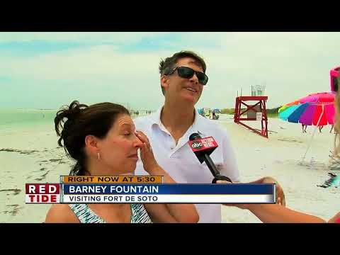 """Marine expert: """"Substantial"""" red tide could impact Pinellas soon"""