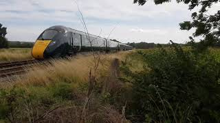MY Forest Is Right Outside Of The Train Line! AHHH Its annoying!!!