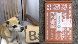 Bulu & BarkBox Unboxings: Weightloss and Doggie Boxes Thumbnail