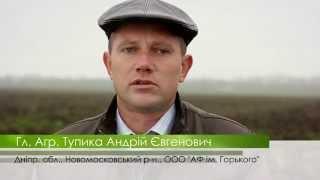№23 Производственное выращивание картофеля с применением биопрепаратов life Force