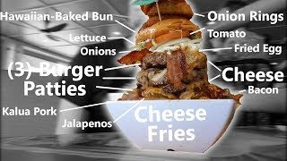Giant Cheeseburger & Cheese Fries Challenge!