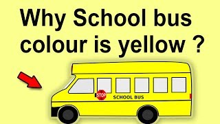 Why school bus colour is yellow | common sense test questions answers