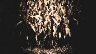 GJ Warez - Popcorn