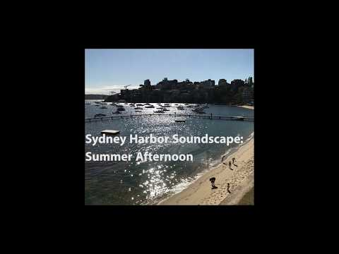 Sunny Summer Day at a Sydney Harbor Beach Soundscape