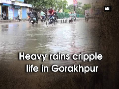 Heavy rains cripple life in Gorakhpur - Uttar Pradesh News