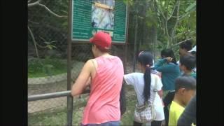 Phnom Tamao - Cambodge- Une journée au parc animalier.