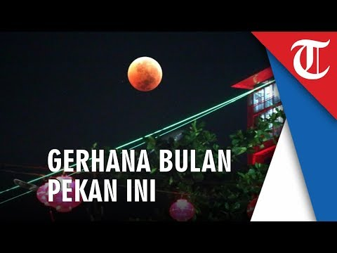 Jakarta - Gerhana Bulan Akan Terjadi Dini Hari, Bisa Disaksikan Dengan Mata Telanjang