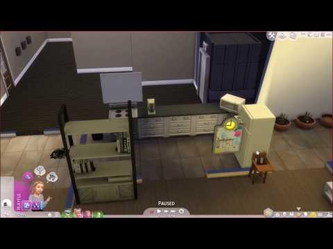 The Sims 4 Parenthood Part 5 (Epic Failure of a Video)  