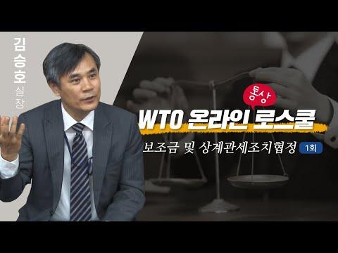 [WTO 온라인 통상 로스쿨] 보조금 및 상계관세조치협정 제1강