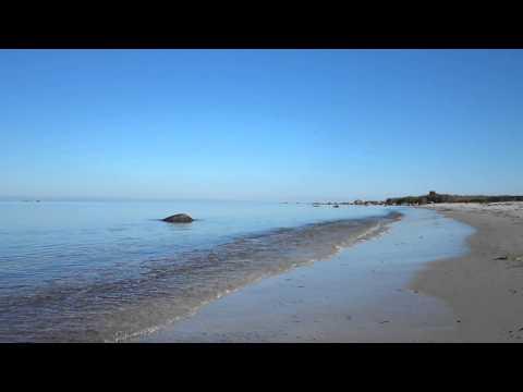 Roondla rand / Beach Roondla Estonia / 01 / august 2013