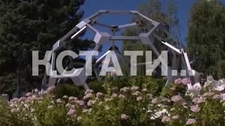 видео Известные цветочные праздники мира