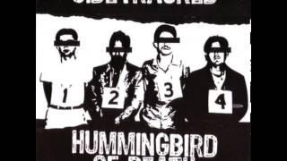 "Sidetracked - Split 6"" w/ Hummingbird Of Death [2010]"