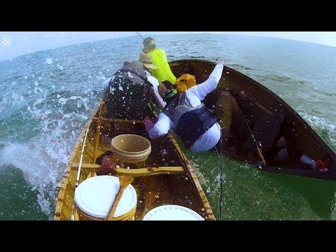 Huge Bull Shark Repeatedly Attacks Fishermen In Canoe