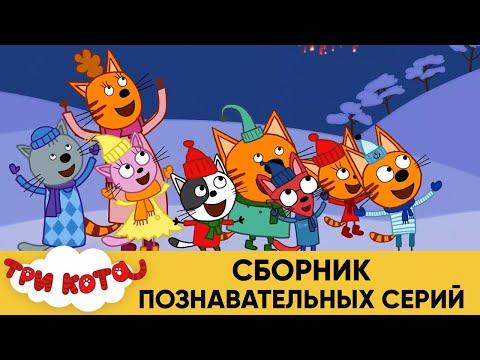 Три Кота   Сборник познавательных серий   Мультфильмы для детей 2021 - Видео онлайн