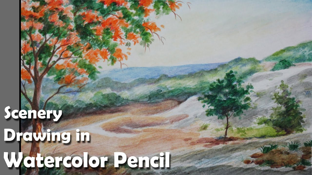 watercolor pencil drawings