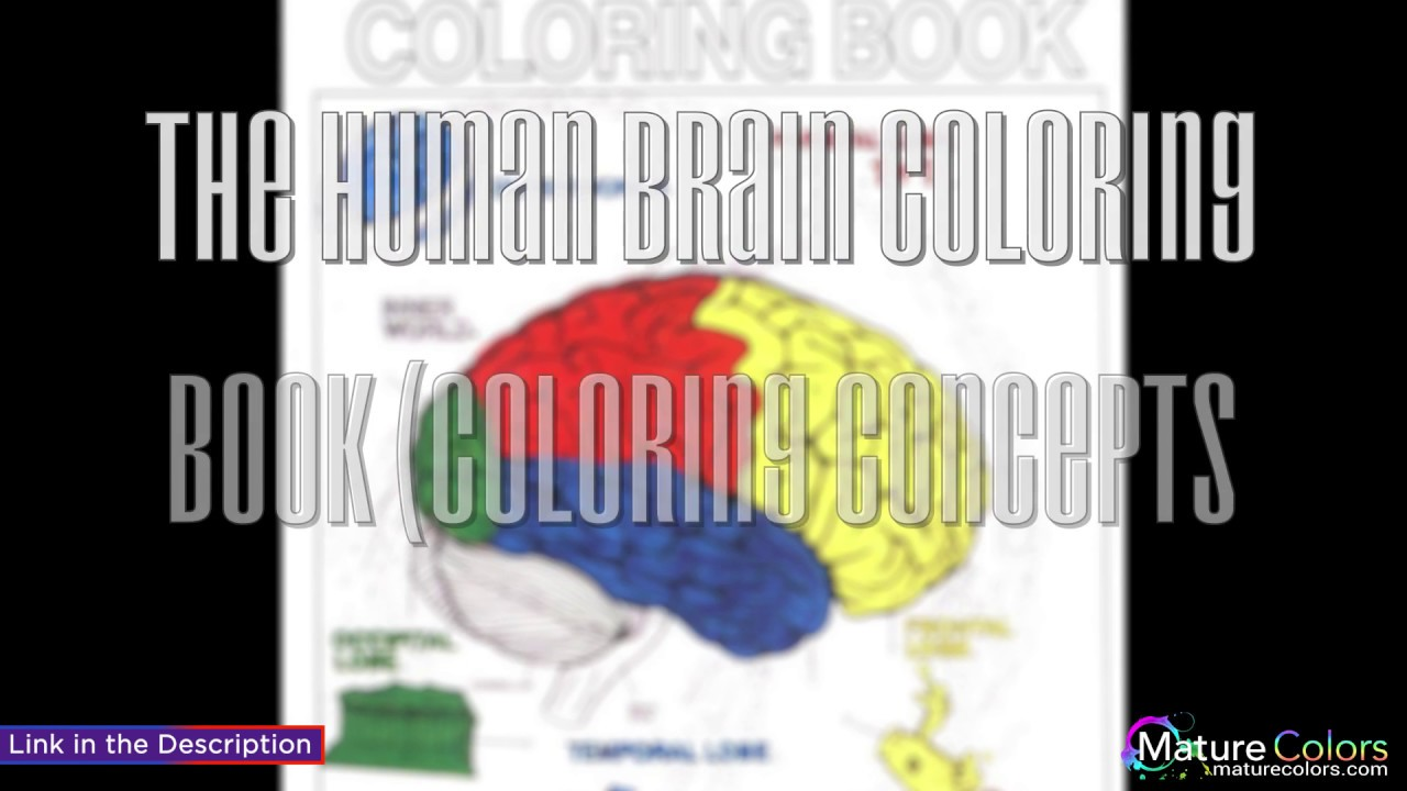 The Human Brain Coloring Book Coloring Concepts Series - YouTube