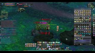 Aion NA 5.0 - Best way to gain easy XP & loot in this patch?!