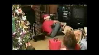 Funny Animals - Christmas Edition