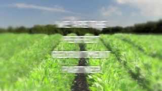 Agricultural Recruitment Specialists - Our Candidates