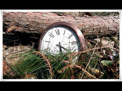 WHEN DO CLOCKS CHANGE FOR 2017 DAYLIGHT SAVING TIME? OR IS IT SAVINGS TIME?