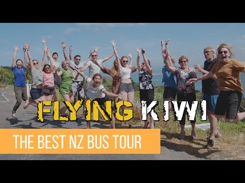 FLYING KIWI NEW ZEALAND BUS TOUR - Way Better Than Stray New Zealand If You Love The Outdoors
