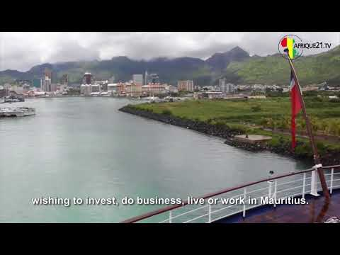 What is the process involved in setting up a business in Mauritius?